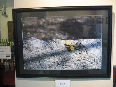 石谷重樹写真展 � ー「あいだ」にあるものー(9)